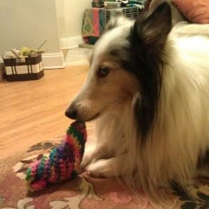 Mmmm yarn!
